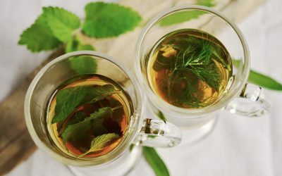 Préparer vos propres infusions digestives avec les plantes méditerranéennes